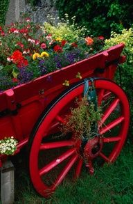 extra color from the wagon makes the flower garden *pop*