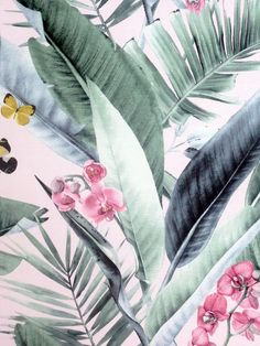 This beautiful Lush Tropical Wallpaper will add a touch of style to any room. It features large palm leaves in soft muted shades of green, surrounded by pink flowers and yellow and black butterflies. This is set on a soft blush pink background. This high quality wallpaper has a light fabric effect making it an even more luxurious statement to have on your wall. Easy to apply, this would look great as a feature wall or equally good when used to decorate a whole room. Wallpaper Paste, Paper Wallpaper, Iphone Wallpaper, Shades Of Green, Pink And Green, Yellow, Tropical Wallpaper, High Quality Wallpapers, Exotic Pets