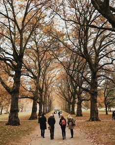 Most Beautiful Places in London in Autumn London Instagram, Fallen London, Autumn Aesthetic, London Places, Green Park, London Life, Cold Day, Art Photography, Beautiful Places