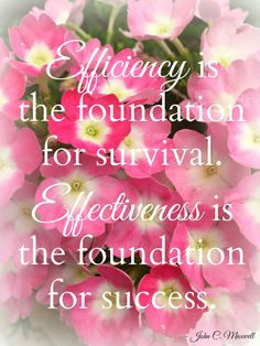 Efficiency is the foundation for survival. Effectiveness is the foundation for success. Quote by John C. Maxwell Photo by Brandee Pember Please like and pin my pin! And don't forget to click on my picture and follow me on facebook! leadership quotes, leadership development, quotes, quotes about strength, personal development, personal development quotes, motivational quotes.