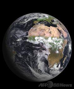 大量絶滅は「速く進行」、中国の地層分析で判明 研究 国際ニュース:AFPBB News