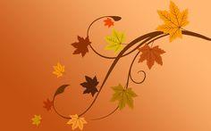Tree branch in autumn wallpaper