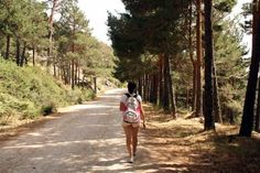Cercedilla is a quaint village in the Madrid mountains hour from the city) offering a variety of trails perfect for hiking in Madrid. Summer Camp Packing, European Honeymoons, Spain And Portugal, Spain Travel, Study Abroad, Madrid, Camping Hacks, Survival, Hiking