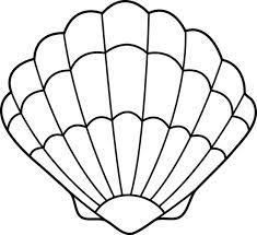 fan shell drawing - Google Search