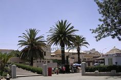 City Park Asmara and best known for its Fresh Squeezed juices. (the stairs lead to the Presidents Office). The surrounding area known for center of #Gelato and cafe