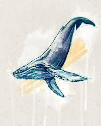 Resultado de imagen para whale illustration vintage