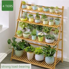 Indoor Flower Pots, Indoor Plants, Indoor Outdoor, Indoor Balcony, Balcony Garden, Garden Shelves, Plant Shelves, House Plants Decor, Plant Decor