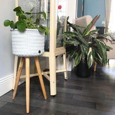 Nouvelle et belle découverte, le cache pot @handed_by Handed By est leader dans les paniers tissés à la main. Cette marque utilise des matériaux qui laisse la plus petite empreinte possible sur l'environnement, comme le plastique recyclé et le bambou. Les produits sont fabriqués à la main et de qualité supérieure. On adore Deco Paris, Blog Deco, Decoration, Comme, Ladder Decor, Planter Pots, Diy, Instagram Posts, Home Decor