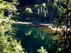 Trout Lake in the Alpine Lakes WiLderness in King County. Alpine Lake, Go Hiking, Washington State, Trout, Nice View, Wilderness, King County, River, Lakes