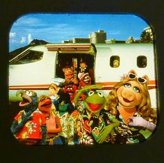Here are some vintage Muppet View-Master Images. I captured these myself with a lamp and a macro zoom setting on my camera. Cool Minecraft Houses, Minecraft Skins, Minecraft Buildings, Jim Henson Puppets, Hama Beads Minecraft, Perler Beads, Statler And Waldorf, Doctor Whooves, Fraggle Rock