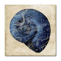 Courtside Market Nautical Blueprint Map I Wrapped Canvas ($80) ❤ liked on Polyvore featuring home, home decor, wall art, nautical theme home decor, canvas wall art, map wall art, nautical home decor and map home decor
