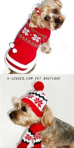 Snowflake Sweater, hat and scarf. For your pooch list. Adorable, warm and cute. From $27 at http://www.4-legged.com/christmas-dog/?&sort=orderby&sort_direction=0&objects_per_page=120