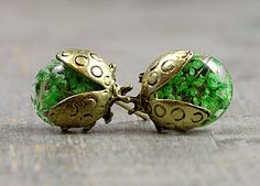 NEW: Real flower beetle stud earrings. Bronze beetles with real green flowers in resin. Gift for her.