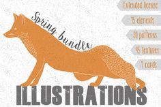 Check out Spring collection by Julia Dreams on Creative Market