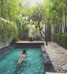 25 ideas para tener una piscina en patios y jardines pequeños Small Inground Pool, Natural Swimming Pools, Small Backyard Pools, Small Pools, Swimming Pools Backyard, Swimming Pool Designs, Pool Landscaping, Backyard Patio, Natural Pools