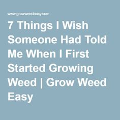7 Things I Wish Someone Had Told Me When I First Started Growing Weed   Grow Weed Easy