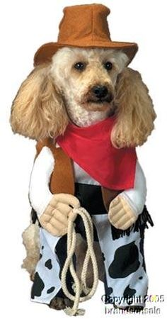 pet cowboy dog halloween costume for large dogs pet advertisings