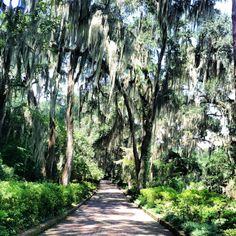 Maclay Gardens Tallahassee Florida