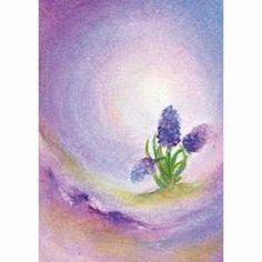 Baukje Exler - Hyacinth