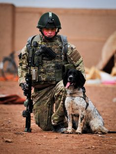 Military Award for Canine  Theo, a Springer Spaniel, Lance Corporal Liam Tasker,  part of the Royal Army Veterinary Corps, 1st Military Working Dog Regiment in Afghanistan in 2010 and 2011. Their role provide search and clearance support, uncovering hidden weapons, improvised explosive devices (IEDs) and bomb-making equipment. During his time in Afghanistan Theo made 14 confirmed operational finds, the most any Arms and Explosives Search dog in Afghanistan has found to date.