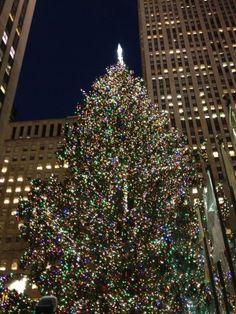 Rockefeller Center Christmas Tree :: How To Manhattan   Part 2