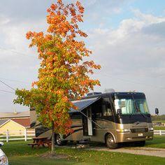 Amish hook up