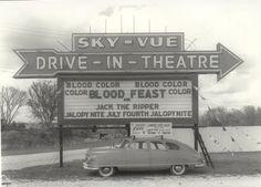 Sky Vue Drive In Paris, TN