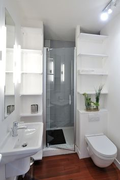 Would a partially walled in shower with the toilet (or sink) against the outside of the wall be a feasible and space-saving design idea in a Tiny House?