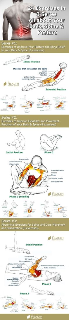 24 Exercises in 3 Series – All about Your Back, Spine Posture - The Health Science Journal
