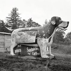 a very fetching dog trade sign - one of 8 picks for this week's Friday Favorites - Living Vintage