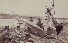 Réparation d'un canot