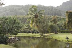 Smith Family Garden Luau. Kapaa Kauai Hawaii