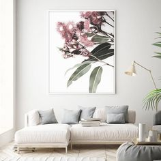 Print above bed. Eucalyptus in Flower. Natural Botanical photographic art print by Olive et Oriel founder, Teigan. Art and framing Australia. Scandinavian style art prints and posters. Kunst Online, Art Online, Framed Wall Art, Framed Art Prints, Botanical Interior, Australian Native Flowers, Australian Art, Country Wall Art, Modern Home Interior Design
