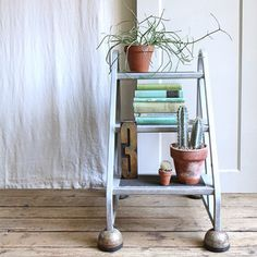 Rolling Ladder Bookshelf now featured on Fab. If I had $350 to blow, I'd blow it on this