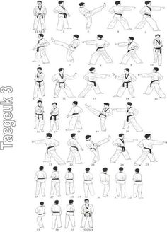 Post with 2370 views. Korean Martial Arts, Mixed Martial Arts, Taekwondo Training, Martial Arts Techniques, Hapkido, Brazilian Jiu Jitsu, Michelle Lewin, Boxing Workout, Judo