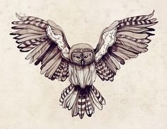 owl drawing. wings spread. stripes. black and white.