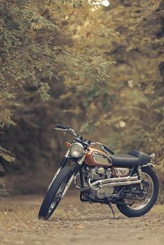 @Marlon Amaro, you're motorcycle needs to be photographed like this :)