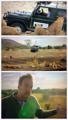 Ben Fogle, Serengeti