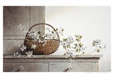 Spring Blossoms Poster by Ray Hendershot at AllPosters.com