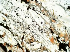 Sillimanite in PPL - the colorless high relief pencil-shaped crystals