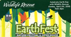 April 26, 2015 at Earthfest (Wildlife Rescue) Burnaby Lake