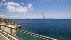 Immobilienkompetenz auf Mallorca hat einen Namen : CASA NOVA PROPERTIES in Santa Ponsa !Große Auswahl, individuelle Beratung, umfassender Service !