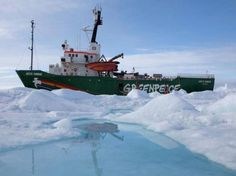 Environmental Audit Committee for Arctic   Greenpeace UK