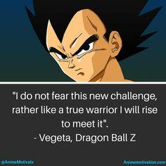 Vegeta!! Dragon Ball Z
