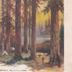 Camping in sequoias -WR Hearst print