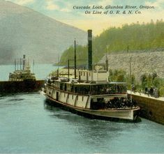 Steam Boats, Oregon, History, Painting, Historia, Painting Art, Paintings, Painted Canvas, Drawings