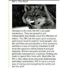 My last name is wolf by marriage and I'm an infj Infj Traits, Infj Mbti, Enfj, Infj Personality, Personality Assessment, Infj Type, Introvert Quotes, She Wolf, Frases