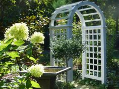 White painted arch by Lavender Blue Garden Design