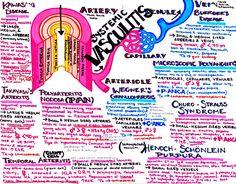 where the art of procrastination meets the study of medicine Nursing School Tips, Medical School, Medical Art, Medicine Notes, Medical Mnemonics, Student Info, Cardiac Nursing, College School Supplies, Health Site