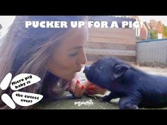 ▶ Pucker Up For A Pig - YouTube